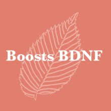 There have been studies finding that 100 mg of coffee fruit extract raised bdnf by as much as 140%. Amazon Com 100 Pure Hawaiian Coffeeberry Coffee Fruit Extract Coffea Arabica 30ml Beauty