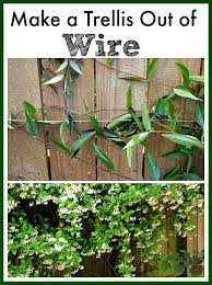 make a trellis out of wire