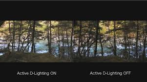 from shooting 4k s to testing difficult focus situations he explores what s possible and why the nikon 1 j5 could be for you
