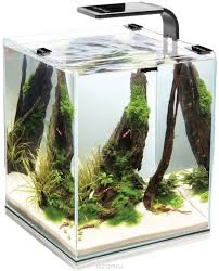 "Aквариум <b>Aquael</b> ""<b>Shrimp Set</b> Smart Led Plant Ll 10"", с ..."