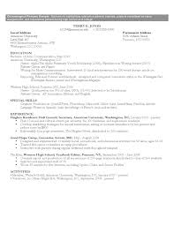 american university resume template chronological resume sle format free