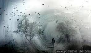Resultado de imagem para fotos quem semea vento colhe tempestade