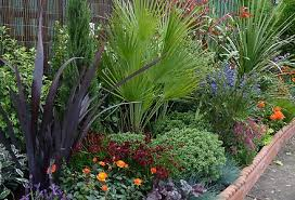 Small Picture Plants For Small Gardens Uk CoriMatt Garden