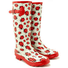 Image result for wellies