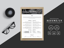 Modern Resume Infographics Lusek Smith Graphic Designer Resume Resume Template By