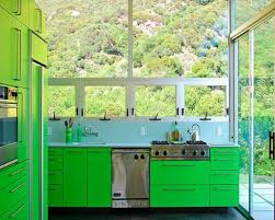 Green Kitchen Cabinet Doors The Amazing Of Green Kitchen Cabinets New Home Designs