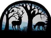 Fensterbild Tiere Wald Transparentbild Wtg Fensterbilder