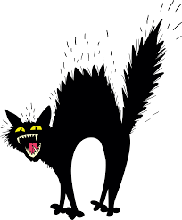 scared black cat clipart. Plain Clipart Scary Black Cat 23572855 Transprent Png Free Download  Small To  Inside Scared Black Cat Clipart T