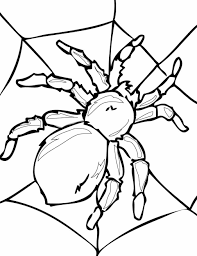 Small Picture Printable Pages For Kids Free Spider Coloring Sheet Printable