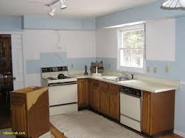 Unique Kitchen With No Upper Cabinets Home Design Ideas Cabinet
