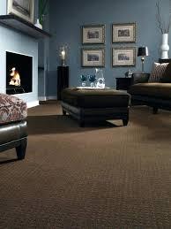 Carpet Living Room Ideas Painting