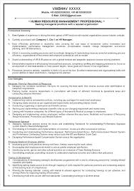 Professional Summary For Resume No Work Experience Good Professional Resumes Emelcotest Com