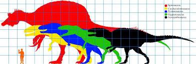 carcharodontosaurus size image theropod size jpg prehistoric wiki fandom powered by wikia