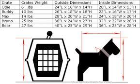 Dog Crate Size Chart Dachshund Crate Size Goldenacresdogs Com