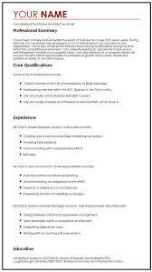 Business Cv Example Myperfectcv