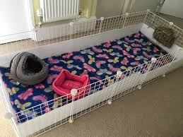 c c cages for guinea pigs uk how to