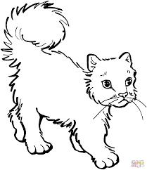 Disegni Di Gatti Da Colorare Pagine Da Colorare Stampabili