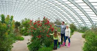 Small Picture Botanic Garden of Wales visitor numbers double with 20000 people