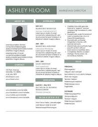 slated for the job modern professional resume templates