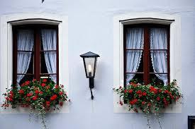 Window in spanish Decor We Heart It Spanish Windows With Red Flowers Via Tumblr
