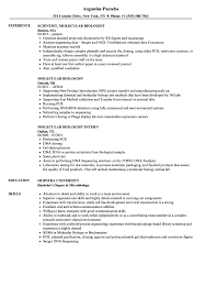 Resume Analyzer Molecular Biologist Resume Samples Velvet Jobs 13