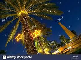 palm tree lamp post palm tree lights outdoor inflatable palm tree with lights outdoor corona air palm tree lamp post palm tree outdoor lights