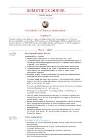 Mba Resume Template Inspiration Mba Resume Samples VisualCV Resume Samples Database