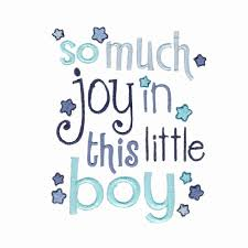 Little Boy Quotes Beauteous New Baby Boy Quotes Holaklonecco