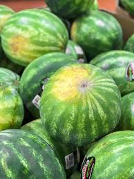 pics of water melon.  Melon How To Pick A Good Watermelon Intended Pics Of Water Melon B