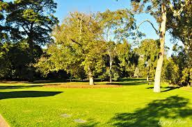 St Kilda Botanical Gardens - Melbourne