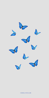 Aesthetic Butterfly iPhone Wallpapers ...