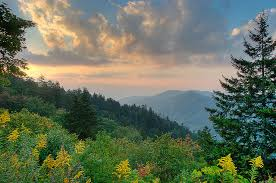Tennessee State Song | Smoky Mountain Rain