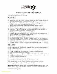 Modern Resume Template 43 Microsoft Word 2010 Resume Template Elegant Modern Resume Templates