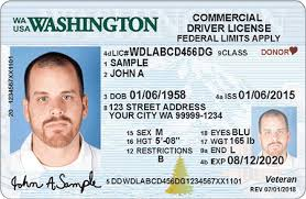 License Designs dol Driver Official Wa Site State Licensing