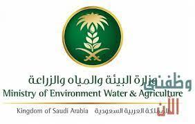 تقديم وظائف وزارة البيئة والمياه والزراعة 1442