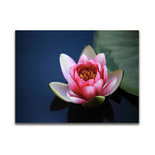 home office wall art. 1 Panels 30x40cm Modern Home Office Wall Art Canvas Decoration Giclee Beautiful Flower Picture Print On