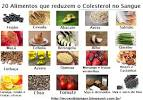 quais alimentos aumentam o colesterol