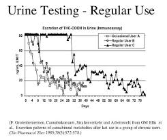 Marijuana Drug Test Detection Times Canorml