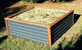 metal garden beds corrugated raised daily galvanized cur perth