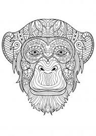 Showing 12 coloring pages related to monkeys. Monkeys Free Printable Coloring Pages For Kids