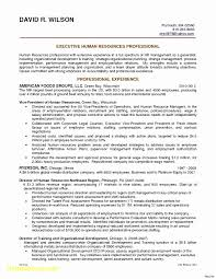 10 Cover Letter Opening Paragraph Examples Cover Letter