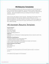 Modern Clean Resume Template Ms Word