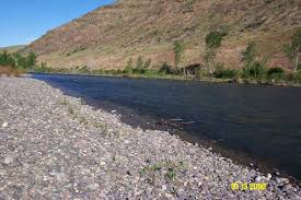 Image result for Sometimes, successive storms strip stream banks of the natural, native vegetation that lines their shores and makes them resilient to flooding. When streams lose their native layer of protection, they often experience more frequent and more severe flooding.