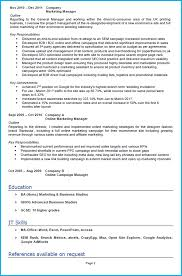 Performance Profile Resumes Digital Marketing Cv Example With Writing Guide And Cv Template