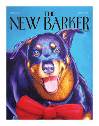 THE NEW BARKER by The New Barker - issuu