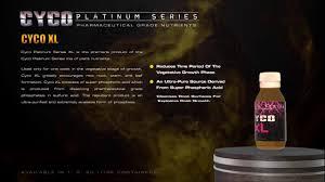 Cyco Platinum Series Xl 2015 Promo