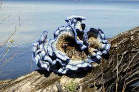 Image result for crocheting adventures with hyperbolic planes