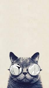 cat wallpaper tumblr iphone. Delighful Cat Cat Wallpaer For Cat Wallpaper Tumblr Iphone