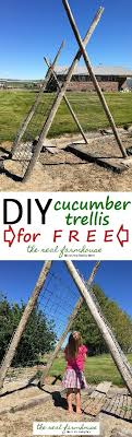 Small Picture Best 25 Cucumber trellis ideas only on Pinterest Permaculture