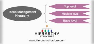 Tesco Management Hierarchy Tesco Organizational Structure
